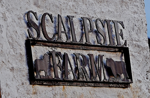 Scalpsie Farm